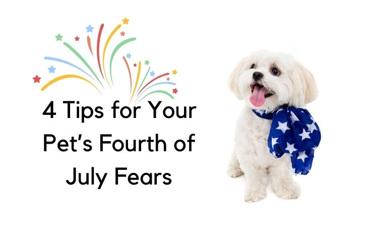 4th of July fears